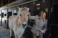 Islandia, NY, March 5, 2014--- Lisa Gatti, Executive Director of Pal-O-Mine, an equine facility that provides therapeutic riding programs for individuals with disabilities, with Vinnie, a 32 year old Norwegian Fjord in the Pal-O-Mine stables. © Audrey C. Tiernan