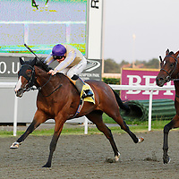Don't Share and Freddie Tylicki winning the 8.00 race