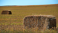 Bales of Hay in South Dakota. Image taken with a Nikon D3s camera and 80-400 mm VRII lens (ISO 200, 165 mm, f/5.6, 1/1600 sec). Gone to See America 2013.