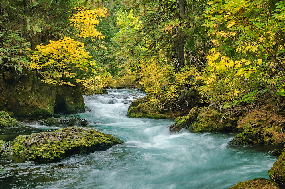 Upper McKenzie River in autumn; Willamette National Forest, Cascade Mountains, Oregon.