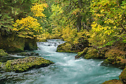 Upper McKenzie River in autumn; Willamette National Forest, Cascade Mountains, Oregon.