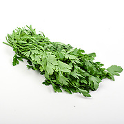 Fresh and organic Parsley (garden parsley Petroselinum crispum) on white background