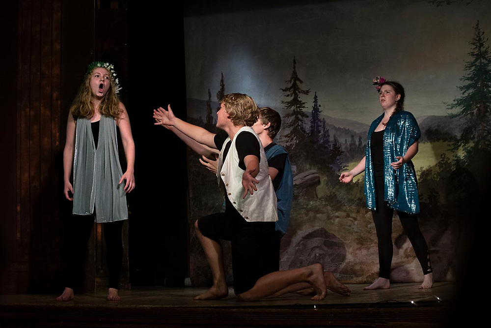 "The Chelsea Funnery's performance of ""A Midsummer Night's Dream"" in Chelsea, Vt., on July 27, 2018. (Photo by Geoff Hansen)"
