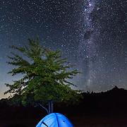 Milky Way night sky over illuminated tent and tree.