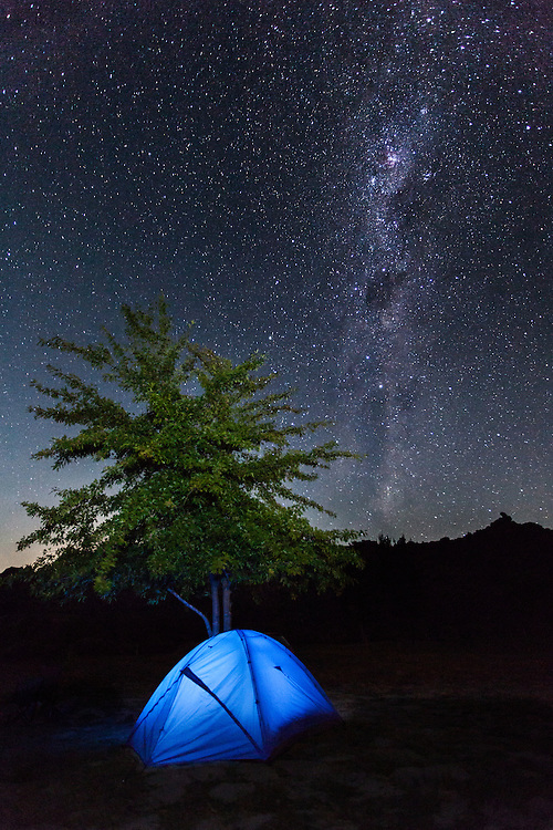 Milky Way night sky over illuminated tent and tree.