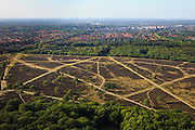 Nederland, Noord-Holland, Hilversum, 23-05-2011; Hoorneboegsche (Hoorneboegse)Heide met in de verte de zendmast (televisietoren) van de KPN op het Mediapark. Charolais runderen begrazen de heide..Moorlands near Hilversum, the  radio mast of the broadcasting park at the horizon. luchtfoto (toeslag), aerial photo (additional fee required).copyright foto/photo Siebe Swart