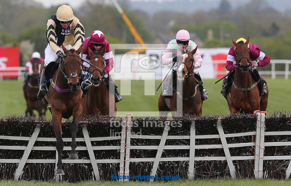 Ruby Walsh on Nichols Canyon wins the Tattersalls Ireland Champion Novice Hurdle during Day Four of the Punchestown Festival at Punchestown Racecourse<br /> Picture by Focus Images/Focus Images Ltd 07814 482222<br /> 01/05/2015
