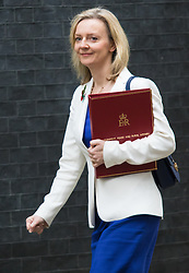 Downing Street, London, November 3rd 2015.  Secretary of State for Environment, Food and Rural Affairs Liz Truss arrives at 10 Downing Street to attend the weekly cabinet meeting. /// Licencing: Paul@pauldaveycreative.co.uk Tel:07966016296 or 020 8969 6875