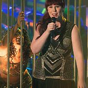 NLD/Amsterdam/20131129 - The Voice of Holland 2013, 3de show, Ilse de Lange