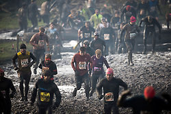 """©  London News Pictures. 27/01/2013.  Competitors being  pushed to the limits as they compete in the 2013 Tough Guy Challenge on January 27, 2013 in Wolverhampton, England. The event has been widely described as """"the toughest race in the world"""", with up to one-third of the starters failing to finish in a typical year. Photo credit: Ben Cawthra"""