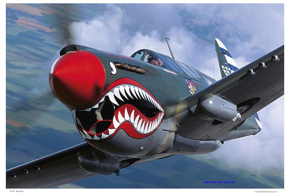 P-40 Warhawk aerial closeup