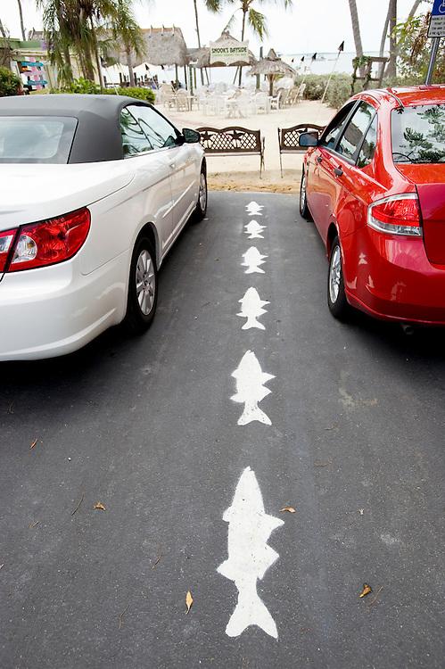 Parkplatz in Key Largo, Fischmarkierung..Florida 2009..Foto © Stefan Falke.