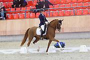 Ashley Langevoort - Dontruschels<br /> KNHS Indoorkampioenschappen 2016<br /> © DigiShots