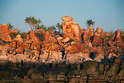Pandanus tops the tideline at Wailgwin Island on the Kimberley coast.