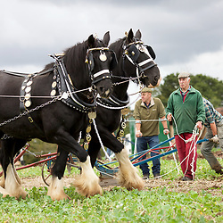 Festival of the Plough 2017