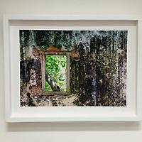 Fine Art Photography para decoración. Tiempo a través de mi ventana. Impresión Giclée sobre papel algodón.