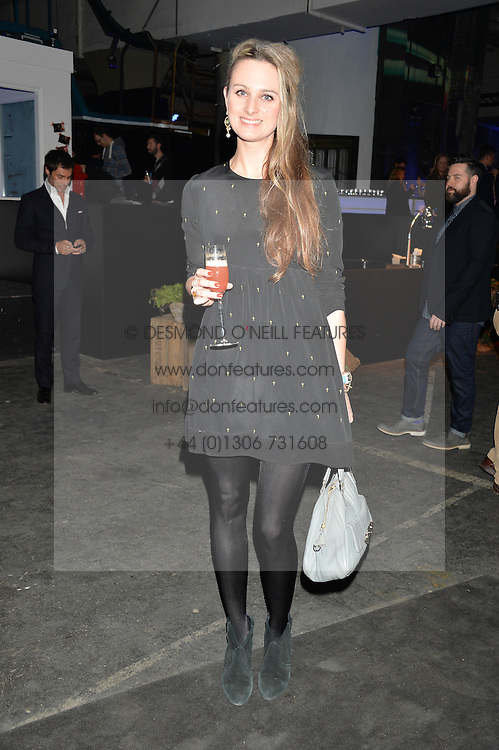 Monday 18th November 2013 saw a host of London hipsters, social faces and celebrities, gather together for the much-anticipated World Premiere of the brand new MINI.<br /> Attendees were among the very first in the world to see and experience the new MINI, exclusively revealed to guests during the party. Taking place in the iconic London venue of the Old Sorting Office, 21-31 New Oxford Street, London guests enjoyed a DJ set from Little Dragon, before enjoying an exciting live performance from British band Fenech-Soler.<br /> Picture Shows:-BRYONY DANIELS