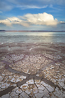 Geometric patterns in drying mud, Alvord Lake, a seasonal shallow alkali lake in Harney County, Oregon