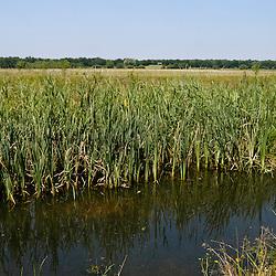 Boxtel, Noord Brabant, Netherlands