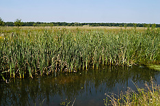 Banisveld, Boxtel, Noord Brabant, Netherlands