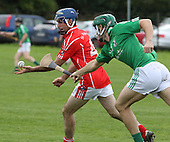 Intermediate A Hurling Championship final St.James V St.Mogues