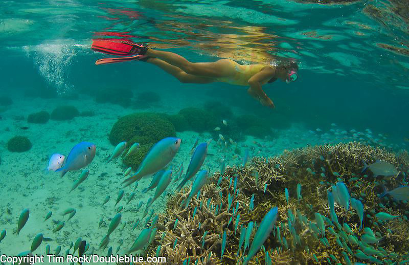 Guam Jan - APril 2013 Images