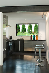 4325 Rosedale Ave Bethesda Levina Fici Pasquina architect and contractor Kitchen