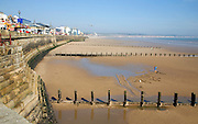 Man digging for worms on sandy beach, Bridlington, Yorkshire, England with groynes and sea wall
