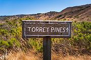 Torrey Pines Trail sign, Santa Rosa Island, Channel Islands National Park, California USA