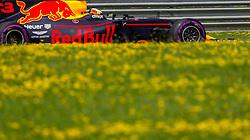 July 8, 2017 - Spielberg, Austria - Daniel Ricciardo of Australia and Red Bull Racing driver during the qualification session on Austrian F1 GP at Red Bull Ring  on July 08, 2017 in Speilberg, Austria. (Credit Image: © Robert Szaniszlo/NurPhoto via ZUMA Press)