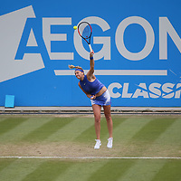Petra Kvitova of Czech Republic during the WTA Women's final against Ashleigh Barty of Australia at the Aegon Classic
