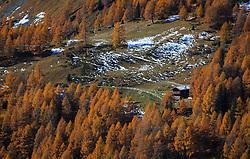 THEMENBILD - Blick auf eine Alm umringt von herbstlich gefärbten Bäumen auf der Grossglockner Hochalpenstrasse. Sie verbindet die beiden Bundeslaender Salzburg und Kaernten mit einer Laenge von 48 Kilometer und ist als Erlebnisstrasse vorrangig von touristischer Bedeutung, aufgenommen am 26. Oktober 2015, Heiligenblut, Oesterreich // View of a mountain pasture surrounded by autumn-colored trees. The Grossglockner High Alpine Road connects the two provinces of Salzburg and Carinthia with a length of 48 km and is as an adventure road priority of tourist interest at Heiligenblut, Austria on 2015/10/26. EXPA Pictures © 2015, PhotoCredit: EXPA/ JFK