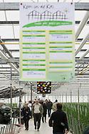 BOMMELERWAARD - Landelijke Open Dag in de Kassen van heel Nederland. FOTO LEVIN DEN BOER - PERSFOTO.NU