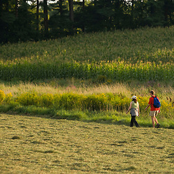 Walking in a field on a farm in Pepperell, Massachusetts.