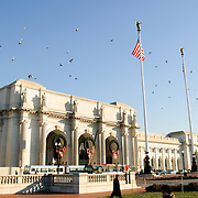 Exterior of Washington DC's Union Station in winter with flock of pigeons in flight