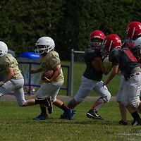 09-20-14 Mighty Mite Gold Bobcats vs. Wild Hogs