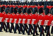 A military parade by Guardsmen at in London, UK