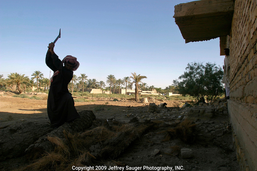 A villager chops wood from a date tree for cooking fire during the Al-kasid family's homecoming in their home village of Suq ash Shuyukh, Iraq.