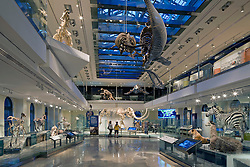 Natural History Museum Los Angeles, CA USA Job ID 5639