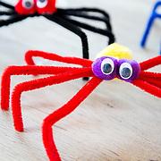 Ali Coghlan - Spiders