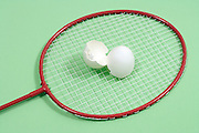 close up of a badminton racket with broken white egg shell