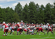 NFL: Arizona Cardinals-Training Camp 2012