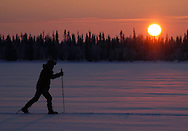 Cross country skiing with ecoturism operator Path finder Lapland, Lapland; Sweden