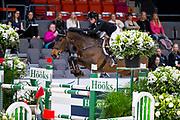 Stephanie Holmen - Flip's Little Sparrow<br /> Gothenburg Horse Show 2019<br /> © DigiShots