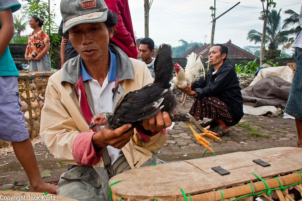 25 APRIL 2010 - PAYANGAN, BALI, INDONESIA: Men with their fighting cocks in the market in Payangan, Bali. Many Indonesians shop every day because they don't have refrigerators in their homes. The markets also serve as social hubs, with people gathering to gossip and trade the latest news.  PHOTO BY JACK KURTZ