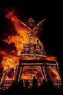 Man Burn