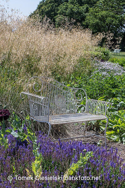 Ornamental grasses surrounded metal bench