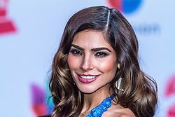 LAS VEGAS, NV - NOV 20  Alejandra Espinoza arrives at the 2014 Annual Latin Grammy Awards on November 20, 2014 in Las Vegas, Nevada. Byline, credit, TV usage, web usage or linkback must read SILVEXPHOTO.COM. Failure to byline correctly will incur double the agreed fee. Tel: +1 714 504 6870.