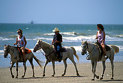 Stock photo of two women and a man riding horses on the beach