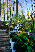 Small stream running alongside wooden stairway and path. Plitvice National Park, Croatia